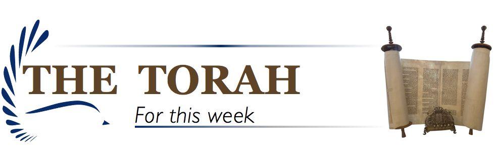 Torah Banner