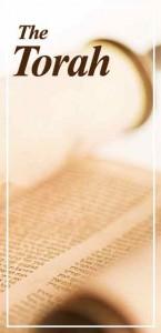 Torah Portions